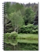 Rainy Day At The Pond Spiral Notebook
