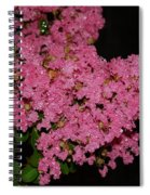 Rainy Day Blooms Spiral Notebook
