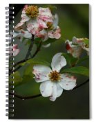 Rainy Day Dogwood Spiral Notebook
