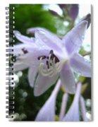 Rainy Day Hasta  Spiral Notebook