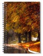 Rainy Day Path Spiral Notebook
