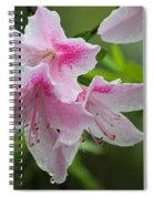Rainy Day Series - Pink On Pink Azaleas Spiral Notebook