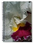 Rainy Orchid Spiral Notebook