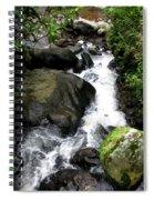 Rainy Season Runoff Spiral Notebook
