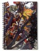 Raisins Spiral Notebook