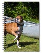 Ranger The Boxer Spiral Notebook