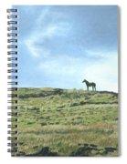 Rapa Nui Horse Spiral Notebook