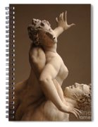 Rape Of Sabine Women Spiral Notebook