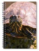 Raphael Spiral Notebook
