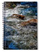 Rapids On The Gore Spiral Notebook