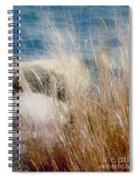 Rapunzel Reeds Spiral Notebook