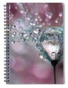 Rasberry Sparkles Spiral Notebook