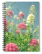 Raspberries And Cream Spiral Notebook