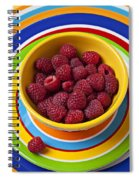 Raspberries In Yellow Bowl On Plate Spiral Notebook