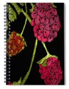 Raspberry Fabric Spiral Notebook