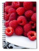 Raspberry Red Spiral Notebook