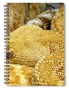Rattler's Repose Spiral Notebook