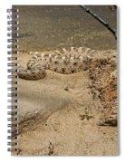 Rattlesnake Arizona Desert Spiral Notebook