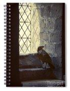 Raven By Window Spiral Notebook