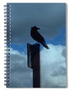 Raven Checking The Wind Spiral Notebook