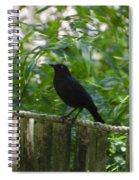 Raven In The Wild Spiral Notebook