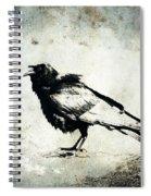 Raven On Blue Spiral Notebook