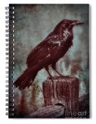 Raven Perched On A Post Spiral Notebook