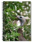 Ravishing Spiral Notebook