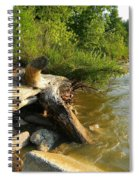 Raw Lake Erie Shore Spiral Notebook