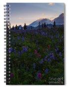 Rays Over Rainier Spiral Notebook