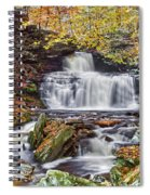 Rb Ricketts Falls Spiral Notebook