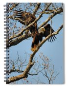 Reach For New Heights Spiral Notebook