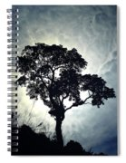 Reach For The Sky .. Spiral Notebook