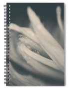 Reach Out And I'll Be There Spiral Notebook