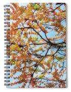 Reaching Autumn Spiral Notebook