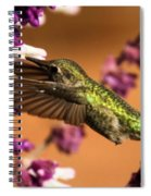 Reaching For The Nectar Spiral Notebook