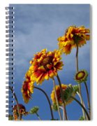 Reaching For The Sky Spiral Notebook