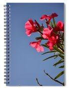 Reaching Out 30016 Spiral Notebook