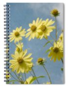 Reaching To The Sun Spiral Notebook