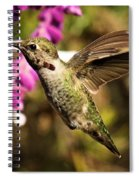 Ready For Nectar Spiral Notebook