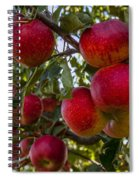 Ready For Picking Spiral Notebook