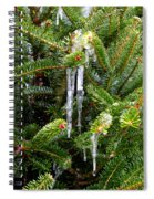Real Christmas Icicles Spiral Notebook