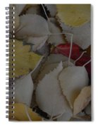 Rebel Heart Spiral Notebook