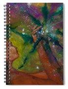 Recapturing Her Soul Spiral Notebook