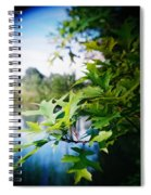 Recesky - Summer Oak Leaves Spiral Notebook