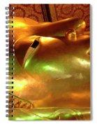 Reclining Buddha 1 Spiral Notebook