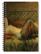 Reclining Nude Spiral Notebook