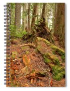 Recycling In The Cheakamus Rainforest Spiral Notebook