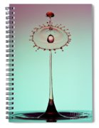 Red Accent Spiral Notebook