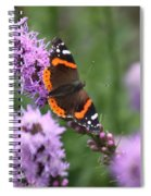 Red Admiral Butterfly On A Blazing Star Spiral Notebook